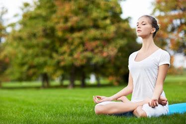 Sukhveda – Ayurvedic Wellness Center